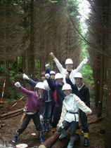 標茶区人工林での間伐作業