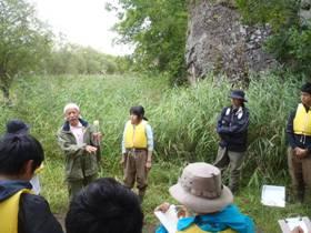 湿原の堆積物を観察