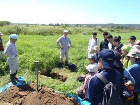 牧草地の土壌調査
