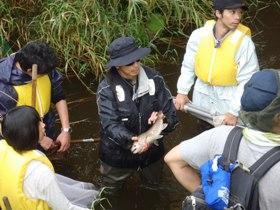 別寒辺牛川での水生生物調査