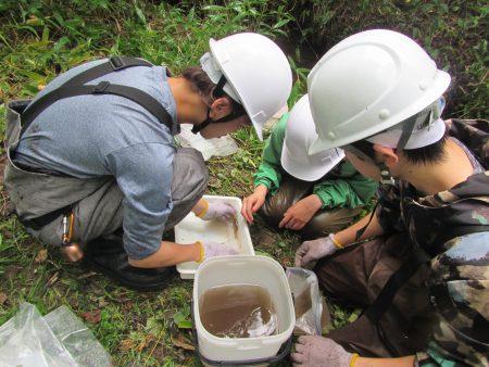 捕獲した水生生物の体重体長計測