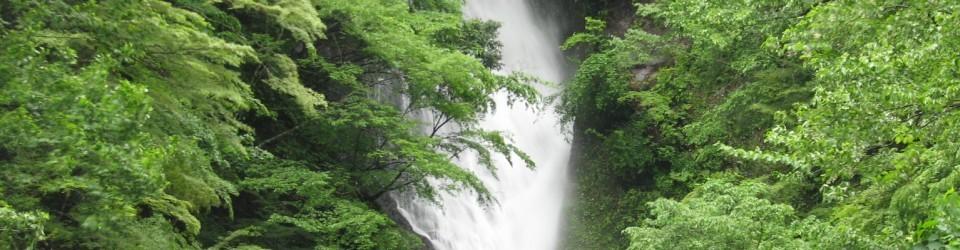 京都大学フィールド科学教育研究センター森林ステーション和歌山研究林