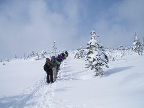 冬山ハイキング