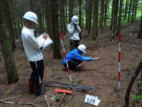 林内光環境の測定