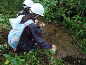渓流水の採取