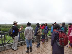 霧多布湿原の見学