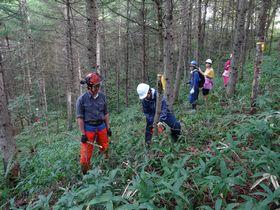 標茶区での間伐実習
