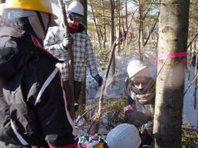 2013年度研究林実習Ⅳ5