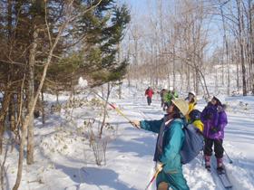 2013年度研究林実習Ⅳ4