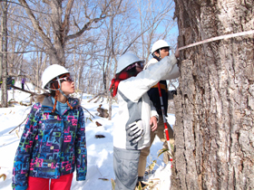 2013年度研究林実習Ⅳ7