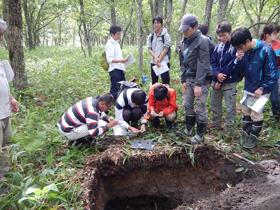 実習Ⅲ標茶土壌