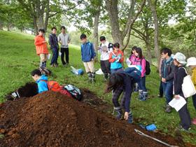 実習Ⅲ土壌断面