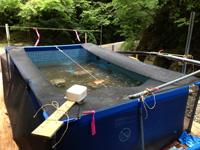 準備の進んだ大型プール