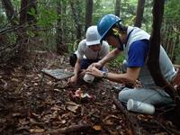 甲虫トラップ回収