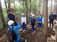 木の倒し方について説明