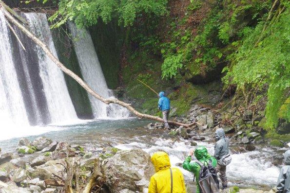 有田川での「森里海連環の再生にむけた取組」最初の集い
