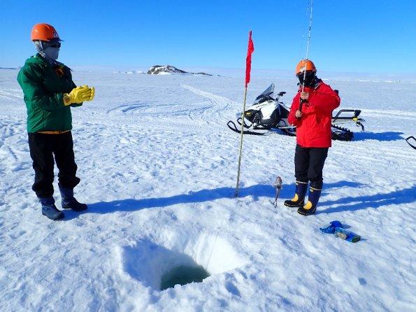 南極における海氷下の魚の行動追跡