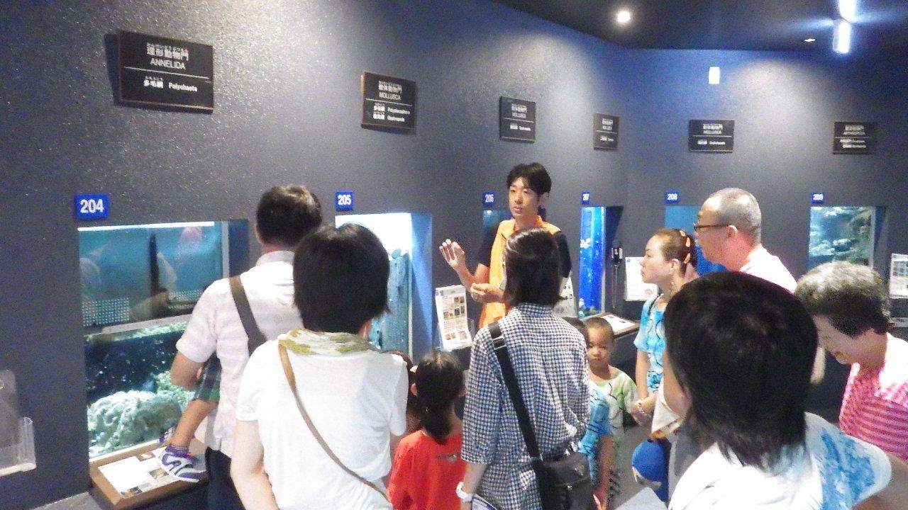 白浜水族館 夏休みイベント(毎日開催)